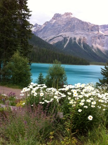 The view from Emerald Lake Lodge in Field, British Columbia.
