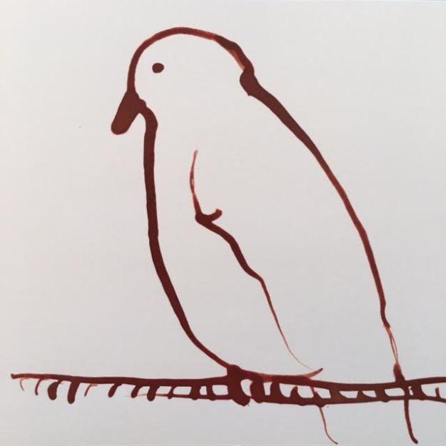 bird-7